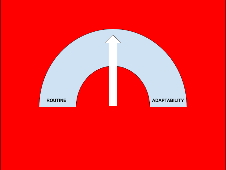 ROUTINE ADAPTABILITY